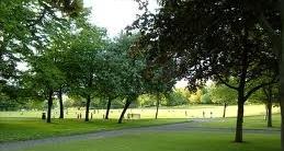 Estate Trees